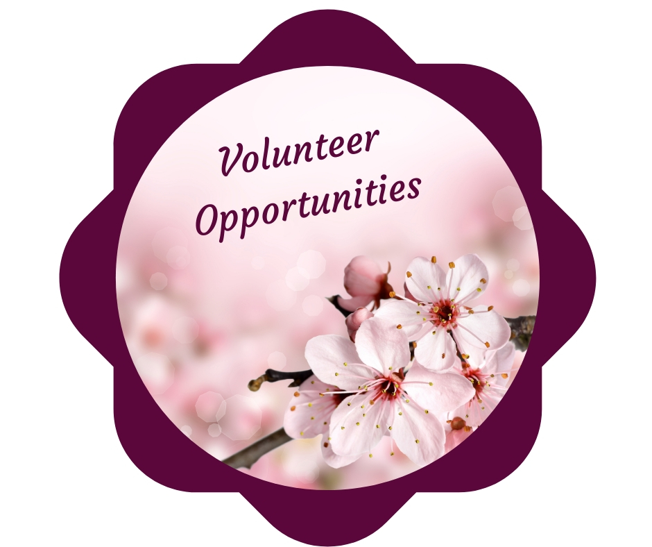 2019 05 15 Volunteer Opportunities image